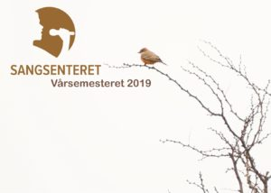 Vårsemesteret 2019, semesterkurs og workshop